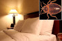 BED BUGS - The Dirtiest Hotels in the USA.
